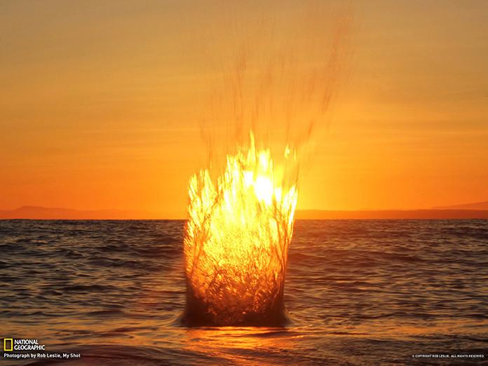 every-splash-has-a-ripple-effect