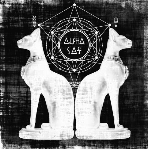 """ALPHA CAT 7"""" Artwork"""