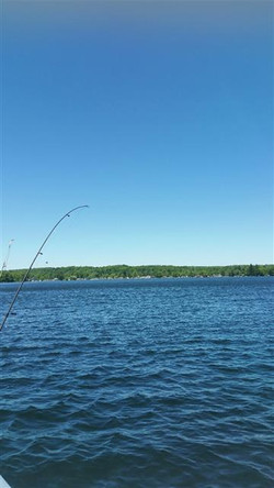 lake with fishing pole
