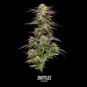 Zkittlez-Labeled.mp4