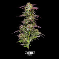 Zkittlez-Labeled.mp4