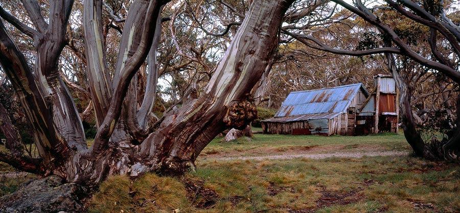 Wallace Hut, Alpine National Park, Victoria, Australia