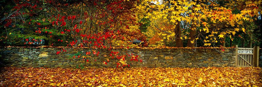 Autumn colours, stone wall and garden gate at Bright, Victoria, Australia