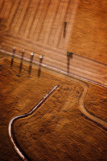 Farmland, crops and harvest, South Western Australia