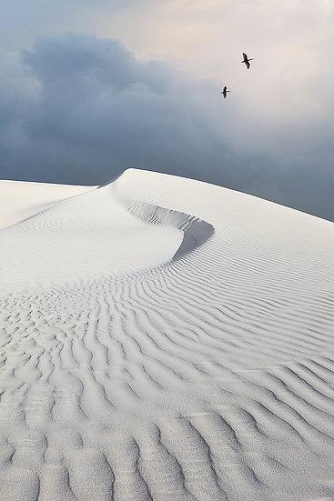 Lancelin Sand Dune Western Australia