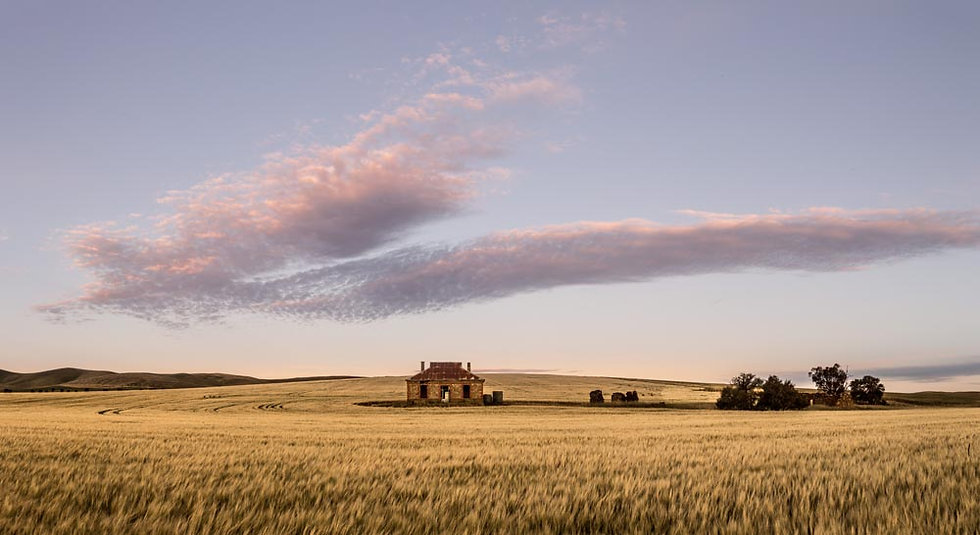 Burra, abandoned farm house, Clare Valley, South Australia