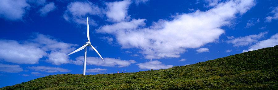 Wind Turbine Farm, Albany, South Coast, Western Australia