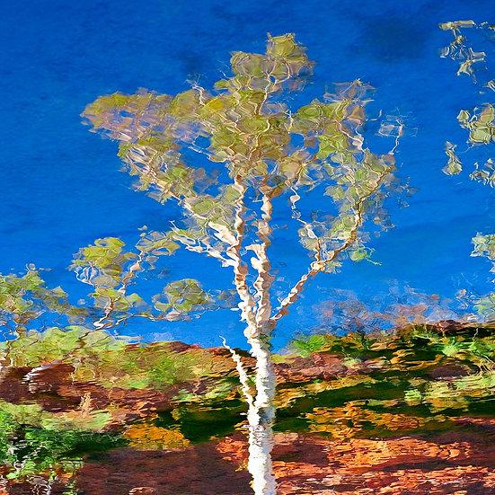 Reflections, Karijini National Park, Pilbara, North Western Australia