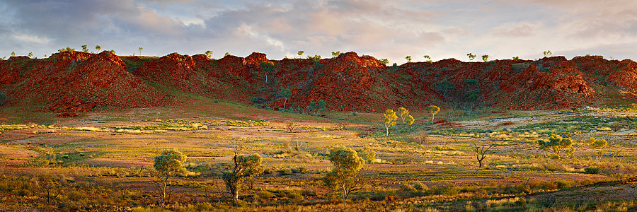 Eastern Pilbara, North Western Australia