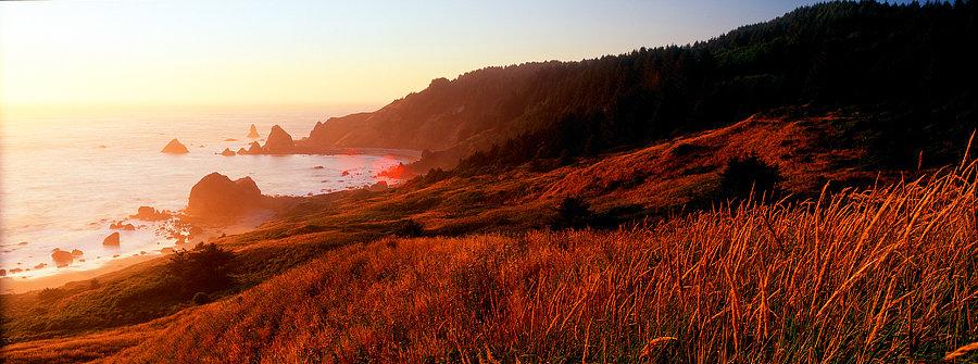 Oregon, United States of America