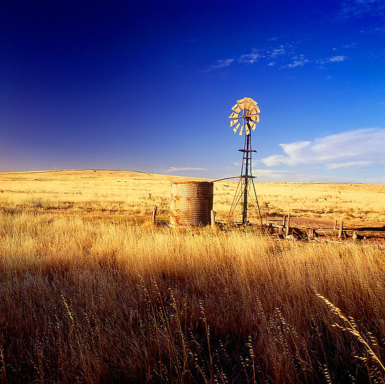 Windmill Farmland