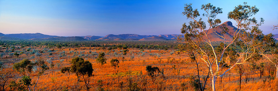 Kununarra, Kimberley, North Western Australia