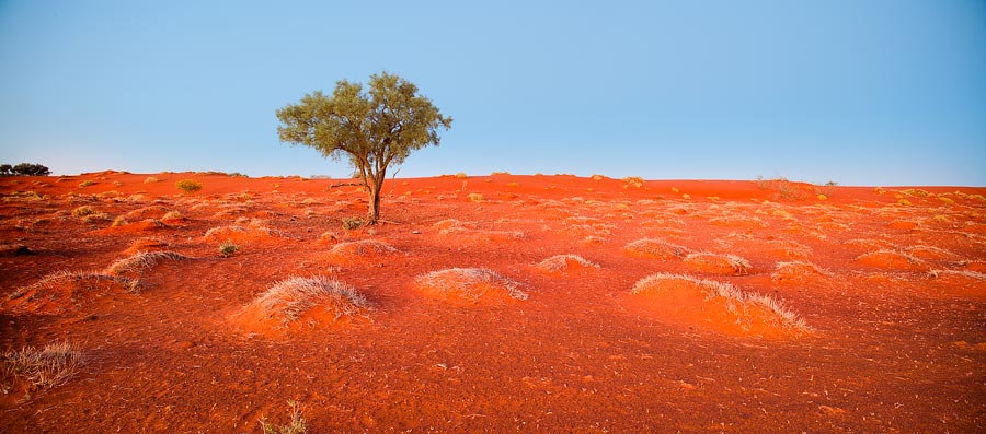 Red dirt of the Australian outback