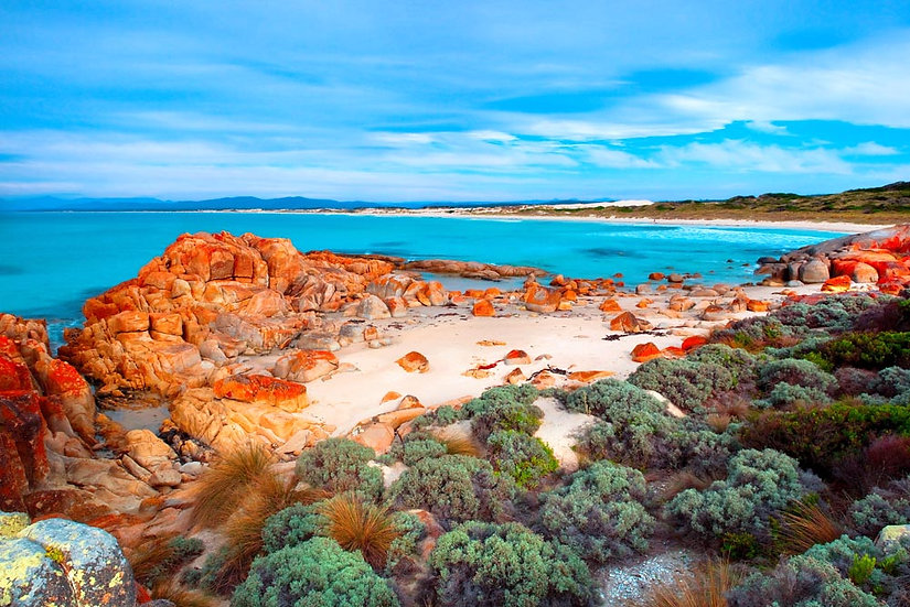 Beer Barrel Beach, St Helens, Bay of Fires, Tasmania Australia