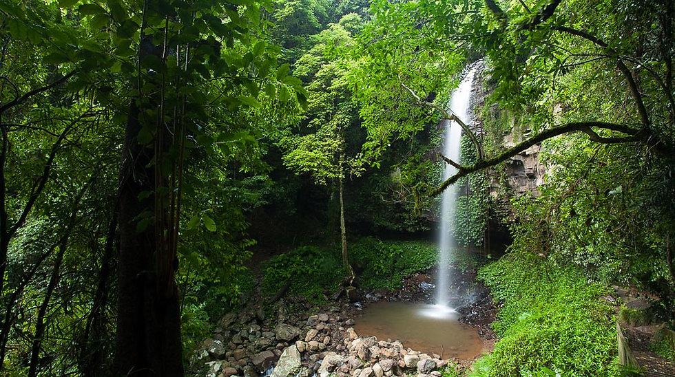 Waterfall and billabong, Bellingen, New South Wales, Australia