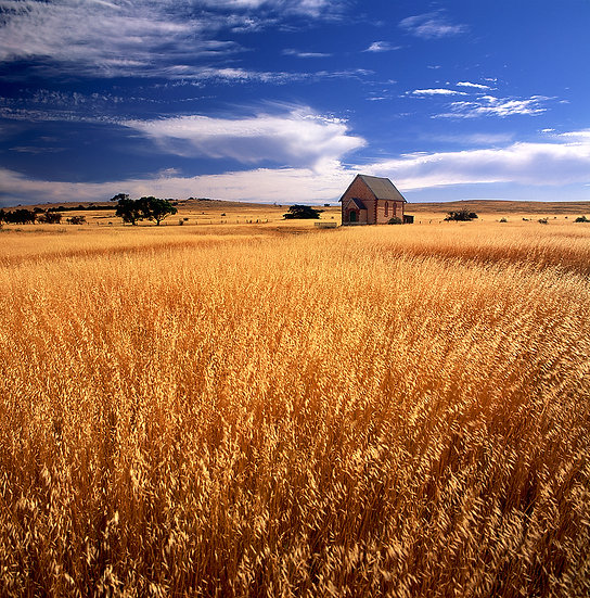 Old Church and hay crops, South Australia