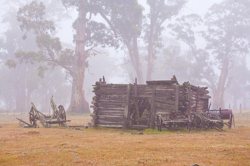 Old wagon and colonial log cabin in the fog, Tasmania, Australia