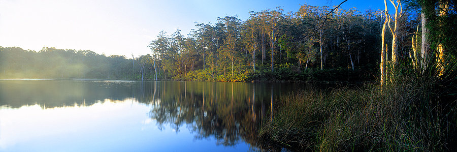 Pemberton, Big Brook Dam, South Western Australia