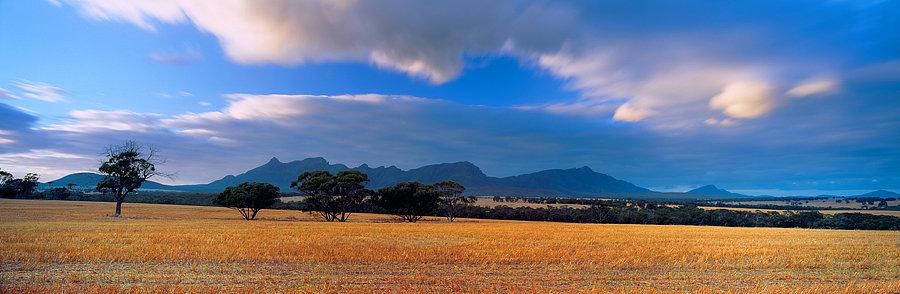 Farmland, Stirling Ranges, Great Southern, Western Australia