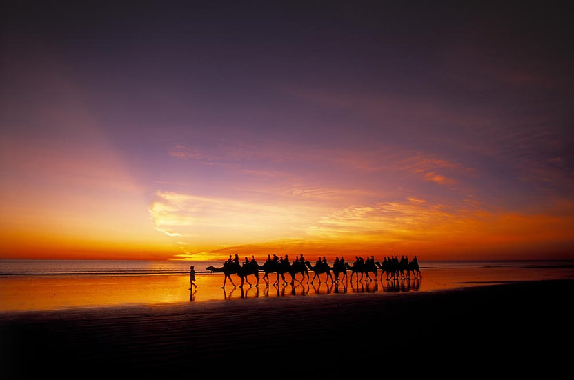 Camel rides at sunset, Cable Beach, Broome, Kimberly, North Western Australia