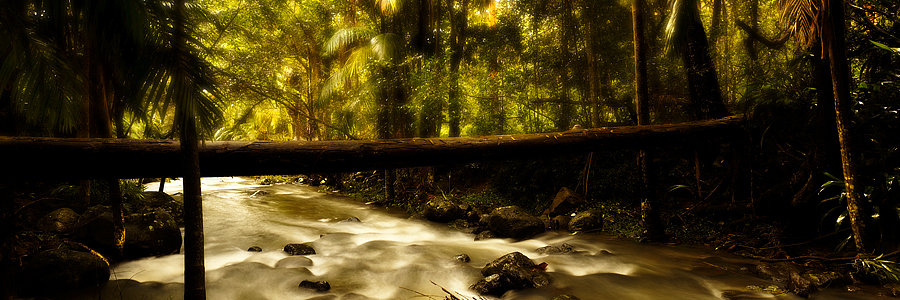 Cedar Creek, Mount Tamborine, Queensland