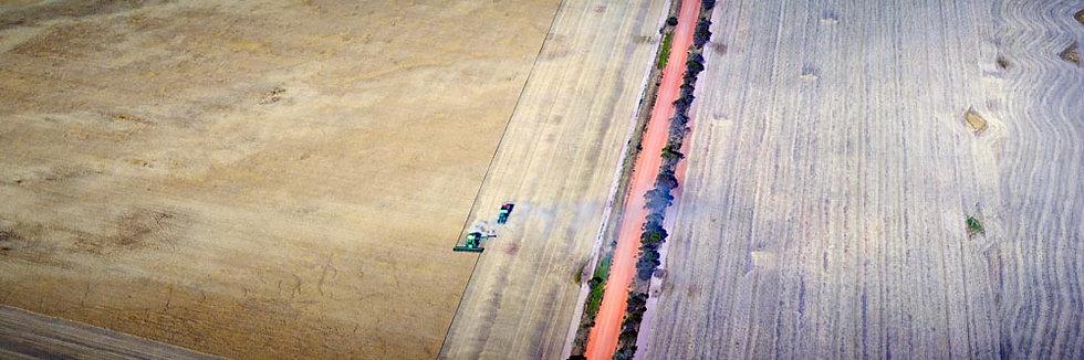 Harvest, Farm Machinery. South Western Australia.