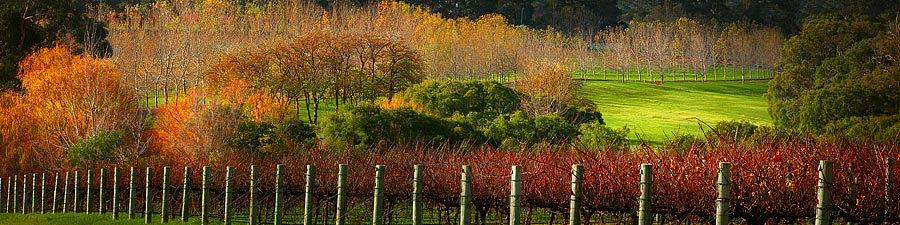 Howard Park Winery, South Western Australia