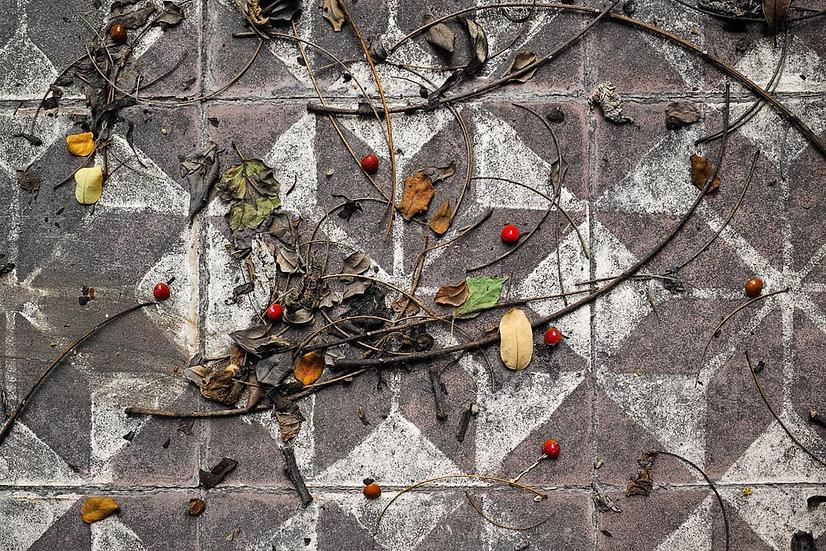 Fruit and Leaf Pattern on a Tiled Floor