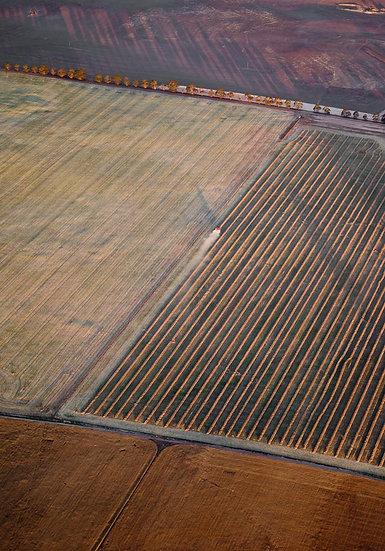Farmland, South Western Australia