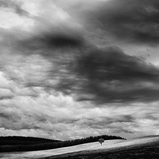 Storm Clouds Over Nannup Farmland, South Western Australia