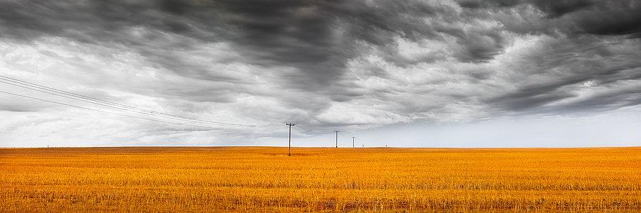Harvest, Storm Clouds, Western Australia