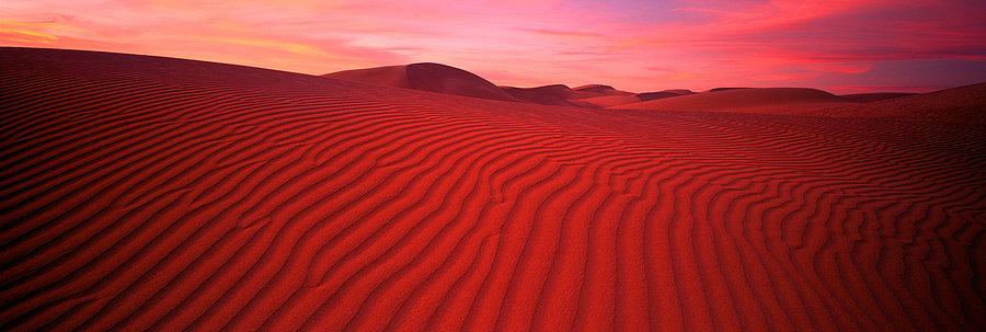 Sand dunes, Eucla, Western Australia