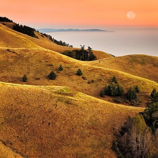 Marin County Hills, USA