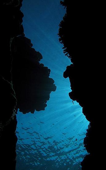 The Swim Through