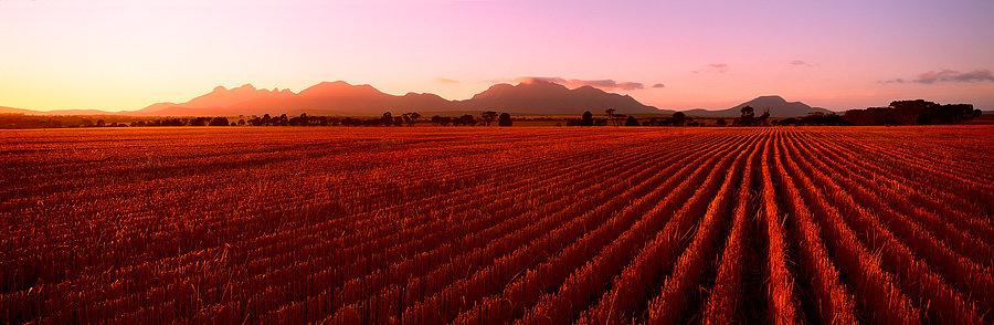 Ploughed Field, Stirling Ranges, Western Australia