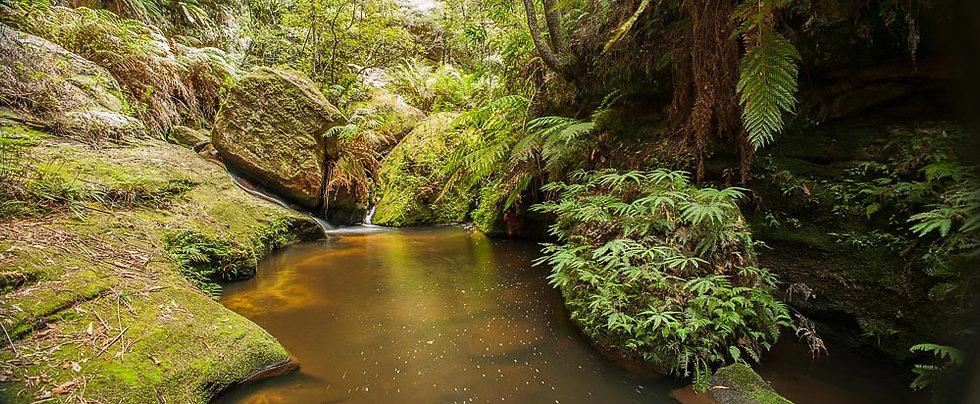 Waterfall and billabong, Blue Mountains, NSW, Australia