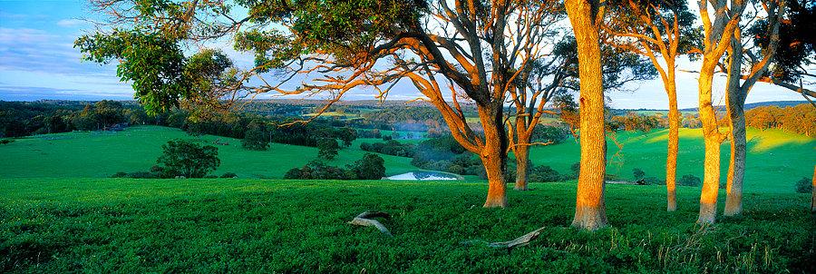 Millbrook Farmland, Yallingup, South Western Australia