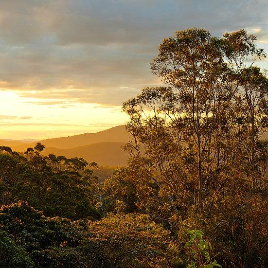 Gold Coast HInterland Sunset