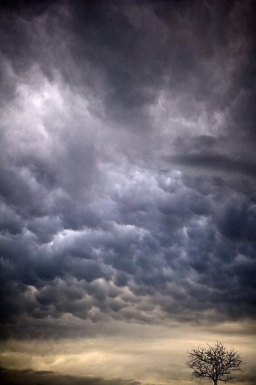 Storm Clouds Over Farm Land , South Western Australia