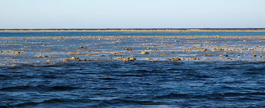 Low tide at Clerke Reef