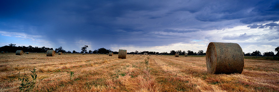 Hay Bales, Quindalup farmland, Dunsborough, South Western Australia