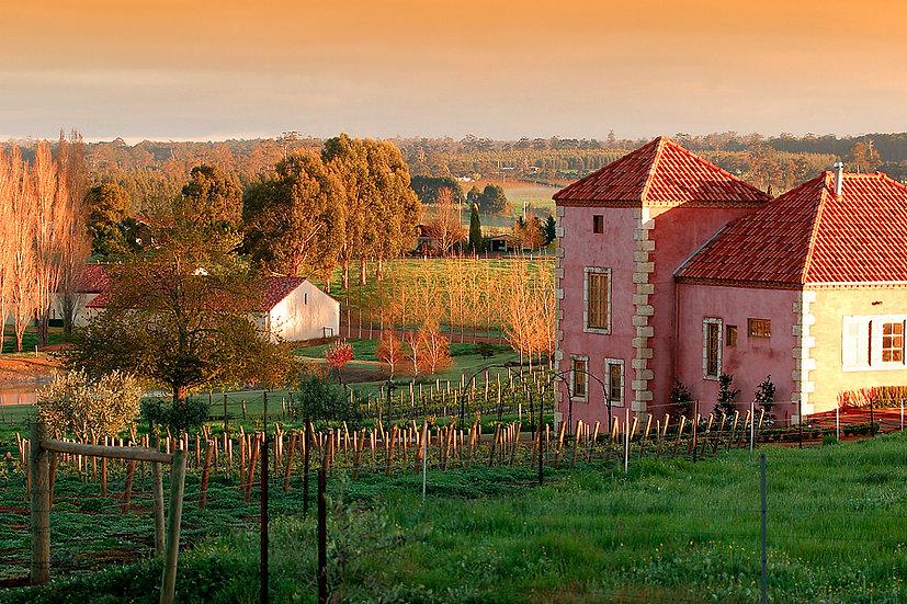 Picardy Winery, Pemberton, South Western Australia