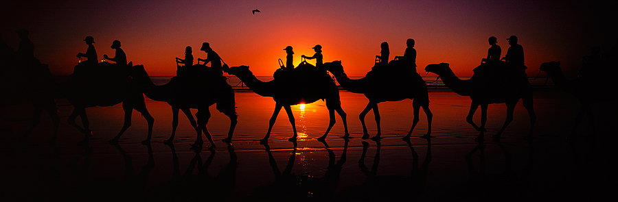 Camel ride at sunset, Cable Beach, Broome, North Western Australia