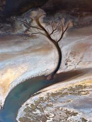 Wyndham Tidal Creeks, North Western Australia