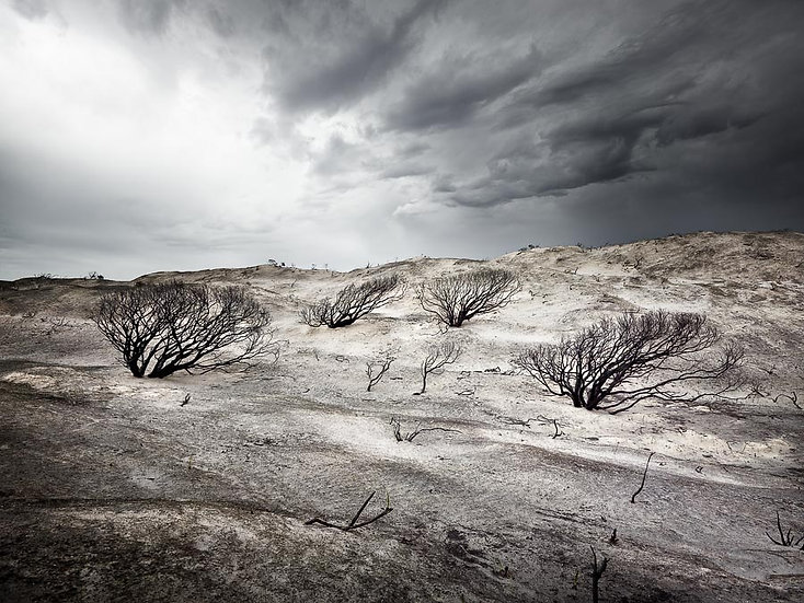 Storm clouds gathering over burnt land