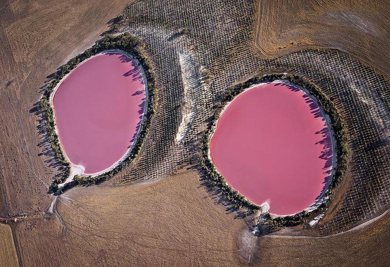 Pink Salt Lake. Cranbrook, Western Australia
