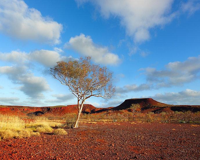 Karijini National Park, Pilbara, Western Australia