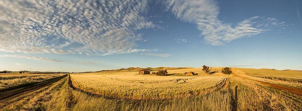 Farming, hay and farm house, South Australia