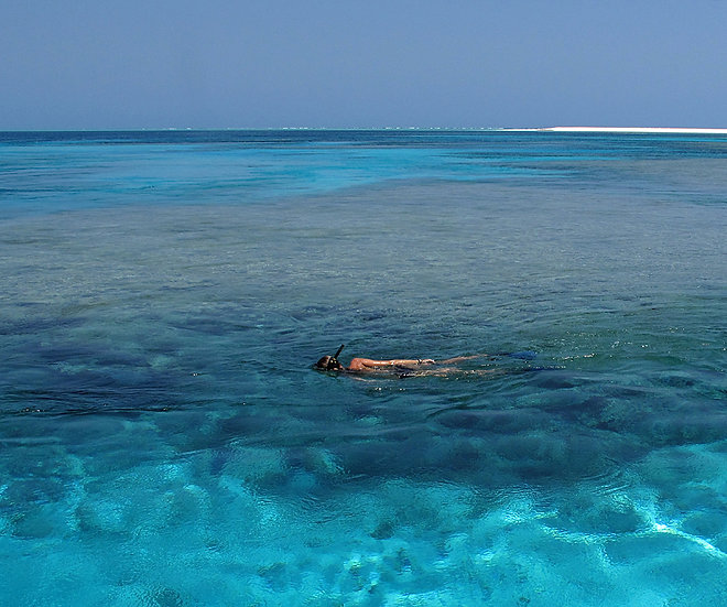 Snorkeller and Cay