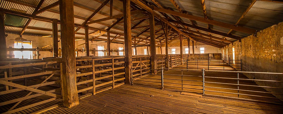 Empty shearing shed, Outback South Australia